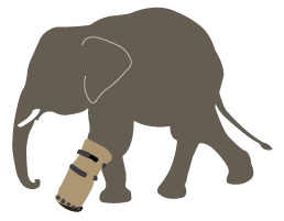 The Elephant's New Shoe by Laurel Neme