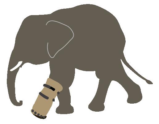 elephantShoe500