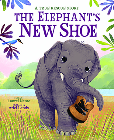 elephant's new shoe375