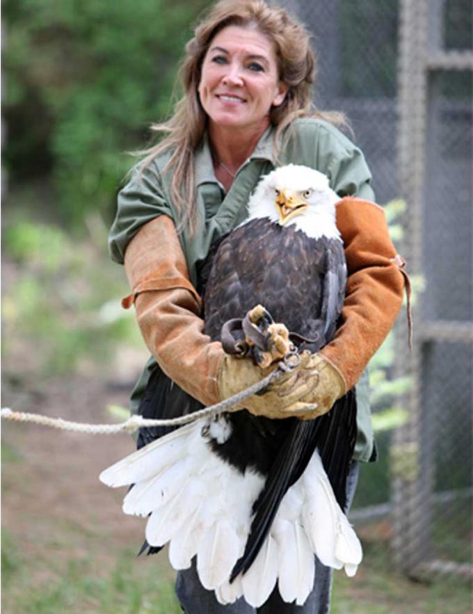 Janie Veltkamp carrying Beauty the bald eagle, who was likely shot by poachers. Image courtesy of Janie Veltkamp.